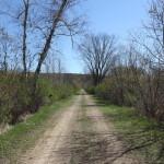 Hillsboro Trail