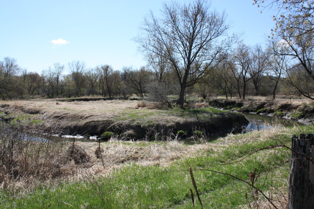 A meander on the Baraboo River. It's one thing to snap a photo -- as I did this spring -- and another matter to float it.