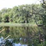 The Crawfish River