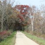 Elroy Sparta Trail Oct 2015